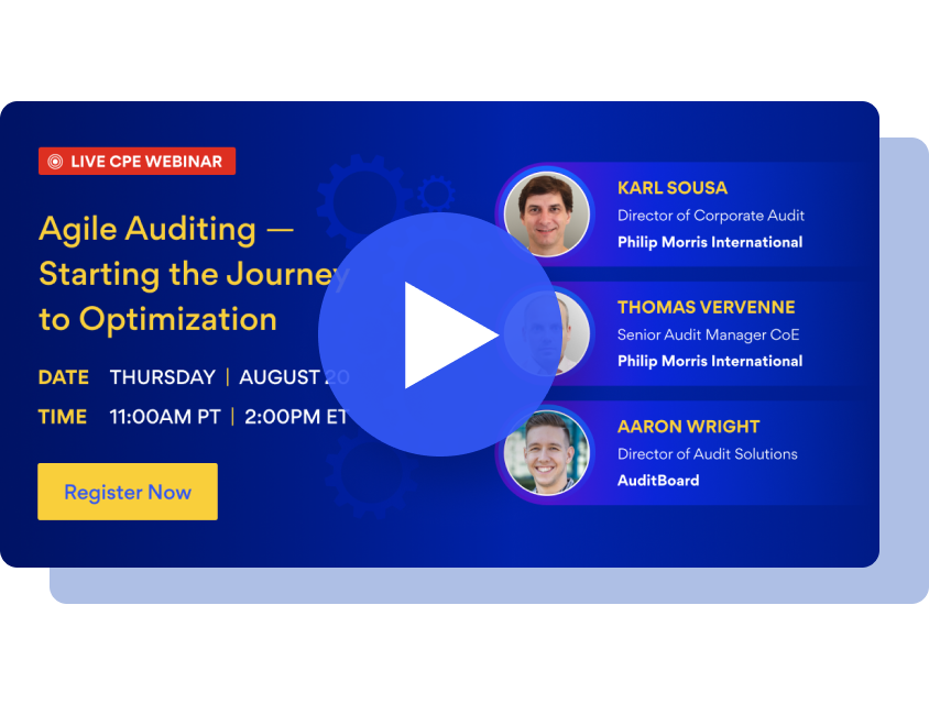 Agile Auditing - Starting the Journey to Optimization