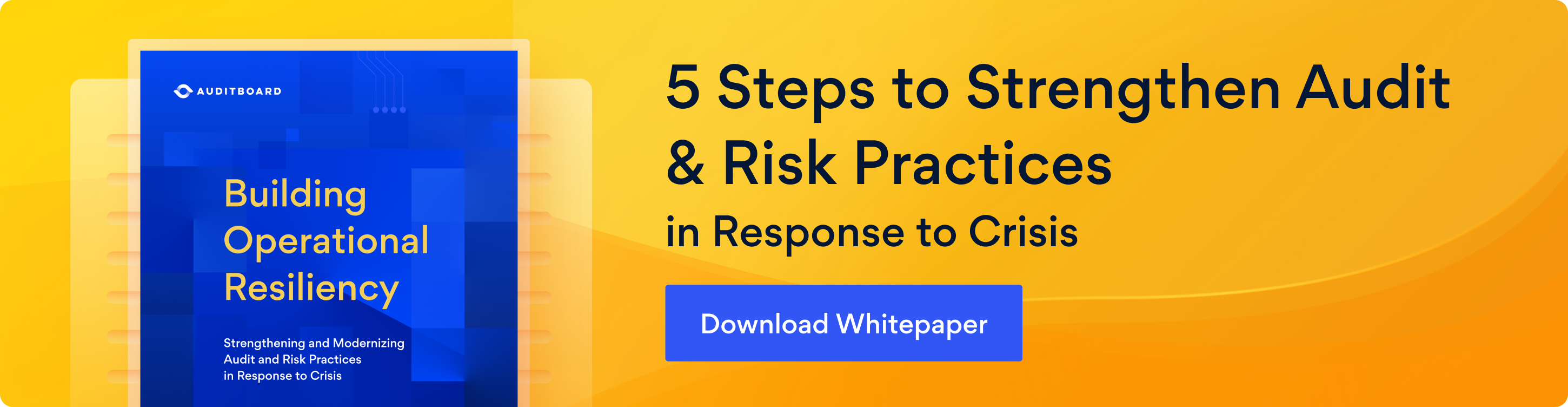 Banner image inviting you to click here to download our free 5 Steps to Strengthen Audit & Risk Practices in Response to Crisis whitepaper.